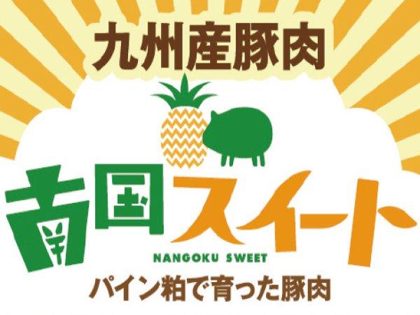 画像1: 南国スイート豚ロース【とんかつ・ソテー用(1センチ厚 500g)】 (1)